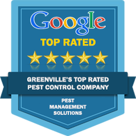 Spartanburg Pest Control Service